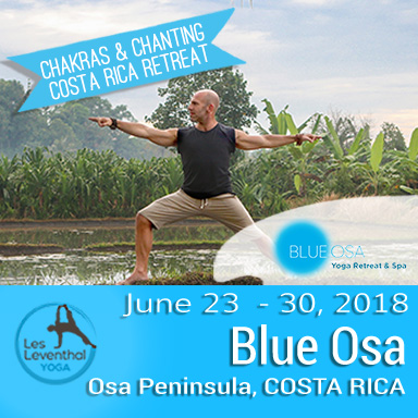 Costa RIca Yoga Retreat Blue Osa