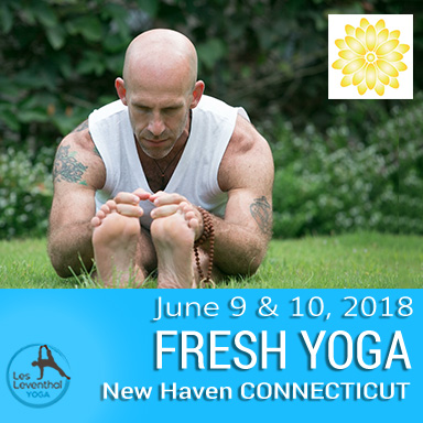 Les Leventhal Yoga Weekend Workshops New Have CT