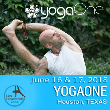 Yoga Workshops Les Leventhal Houston Texas